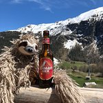 Photo de Les Marmottes