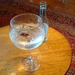 My pre-dinner non alcoholic gin and tonic was very tasty and refreshing. It is garnished with fr