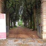 Villa Lais: il viale d'ingresso