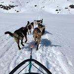 תמונה מSnowhook Adventure Guides of Alaska