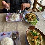 Jungle Kitchen Photo