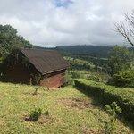 Mufindi Farm Lodge لوحة