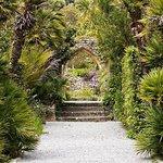Ảnh về Tresco Abbey Garden & Valhalla Collection