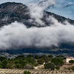 Bodega Valleyglesias en invierno
