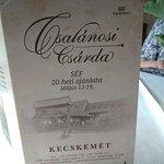 Photo of Csalanosi Csarda