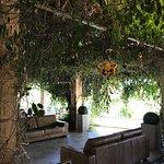 Mapy Restaurante Foto