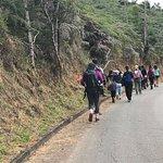 Parque Estadual da Pedra Azul - trilha do lagarto