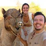 smiley camel