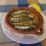 Small fish ''Gavros''