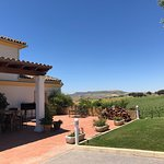 Bilde fra Vinos Chinchilla/ Bodega Dona Felisa