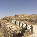 Kerak de Moab Castle Fotografie