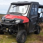 Farm buggy tours