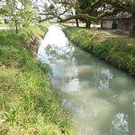 参道の途中にあった桜川。少し濁ってますね。