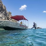 Snorkelling off Scotts Head