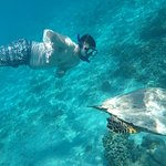 Jhony Gili & Lombok Tours