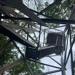 Looking up at the observation tower