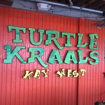 Turtle Kraals照片