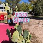 Food Shark照片