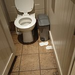 All cubicles in Ladies were like this