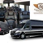 Mercedes Benz Sprinter Coach (14 Capacity)