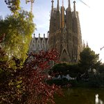 Some nature and the Gaudi's building