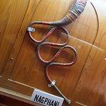 Music Instrument Museun