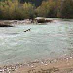 Rivière l'ouvèze