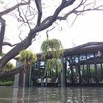 V Villas Hua Hin, MGallery Hotel Collection Photo