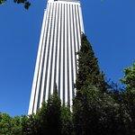 La torre Picasso vista dal giardino