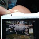 Фотография Мадридский Зооаквариум