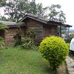 Log cabin accomodation