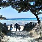 L'accès à la plage de l'Estagnol
