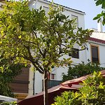 A great shaded spot to enjoy a tapas and a drink