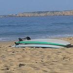 AS_Surf Avatar