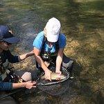 Knapps Creek Trout!
