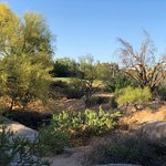 Zdjęcie The Boulders Resort & Spa