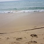Bellissimo il.mare di un colore cristallino..peccato per il troppo vento che ci ha costretto a lasciare la spiaggia molto presto.