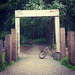 Afan Forest Park Mtb Trails