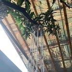 Zdjęcie Mantras Veggie Cafe and Tea House