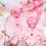 桜を施したワイングラス。カッパーホイールエングレーヴィング(グラヴィール)という加工は、絵画のような繊細な表情をお楽しみいただけます。