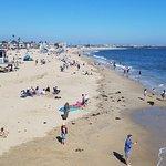 Seal Beach 사진