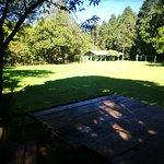 zonas verdes del parque