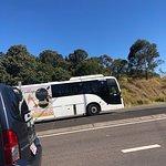 Mykies buss