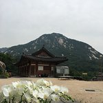 ZenKimchi Korean Food Tours Photo