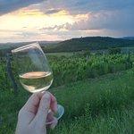 exquisite wine
