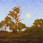 """The Cusp of Eve""  Australian Landscape Oil Painting by Michael Hodgkins"