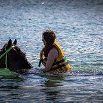 Pferdeschwimmen
