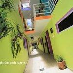 El hotel más cautivador y amable de Tulum Instalaciones nuevas