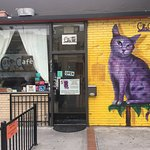 ภาพถ่ายของ The Cat Cafe