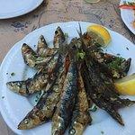Φωτογραφία: Γαλανος ψαρομεζεδες